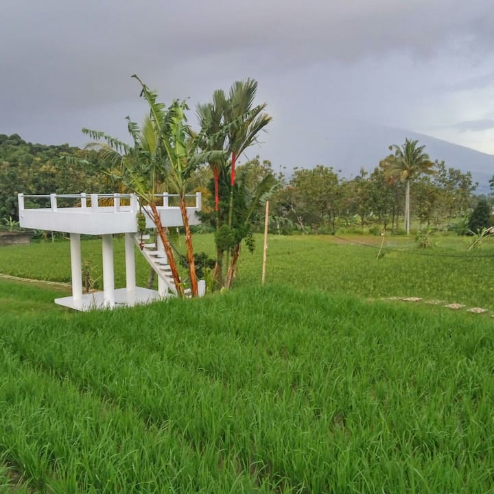 Land Of Blessing - LOB Farmstay - Bungalow