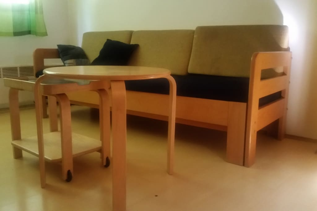 Pull out sofa bed, can be used for sleeping also - ask for additional lines