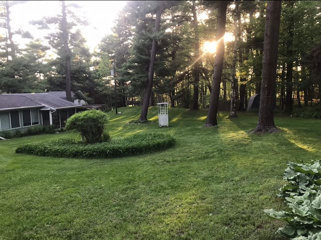 Beautiful, quiet ranch: 2.5 acres and forest