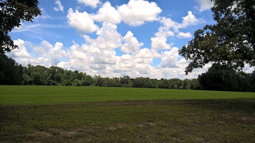 Countryside View on horse farm near Ginnie Springs
