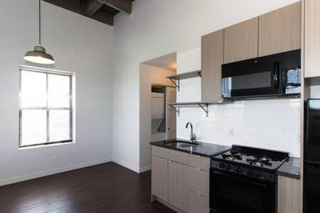Gorgeous, renovated studio for fantastic value! - Chicago