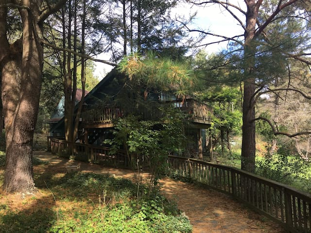 Woodland House on 8 Secluded Acres.  Pet Friendly