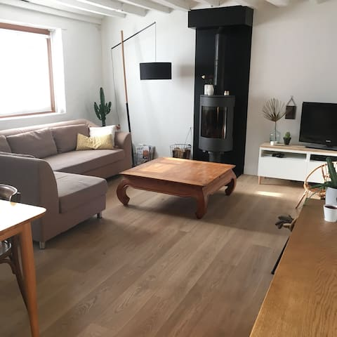 Maison poutres et modernité - Ronchin - House