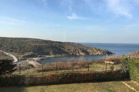 Triplex Villa House Amazing Bosphorus View - Rumelifeneri