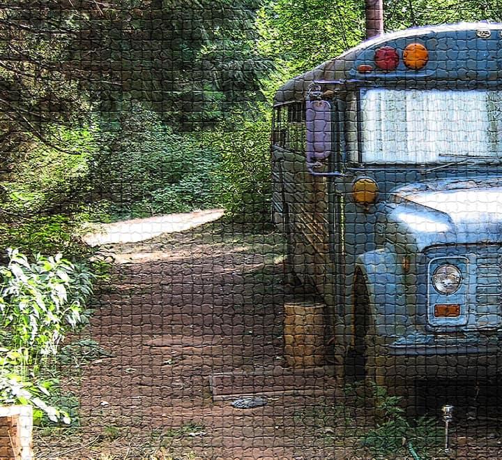 Esmerelda the Magic Schoolbus
