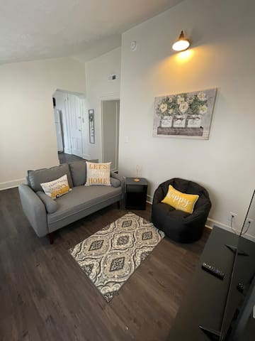 Modern City 1 Bedroom Apartment in Downtown Laf