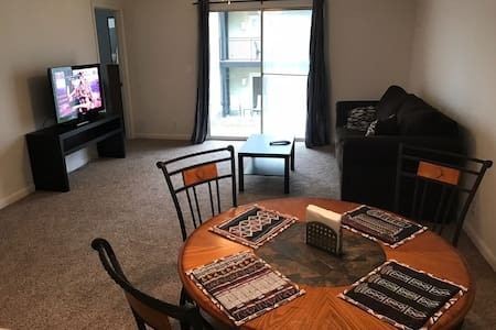 Cozy apartment close to JMU! - 哈里森堡(Harrisonburg) - 公寓