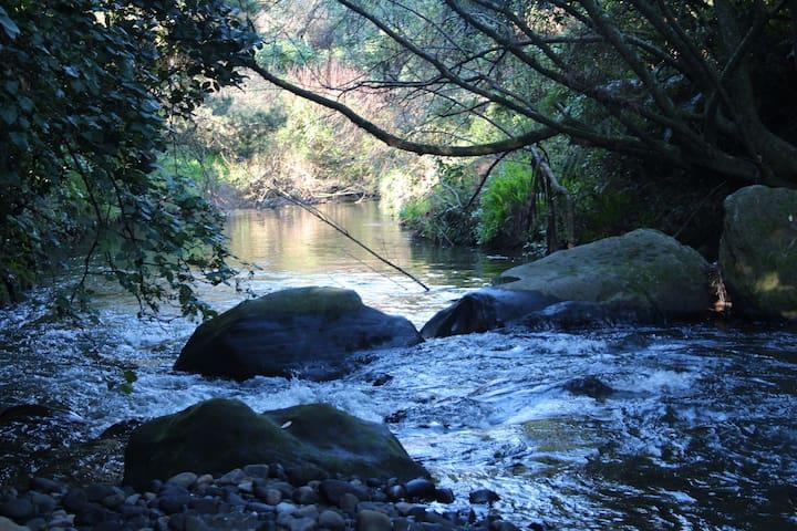 Punehu Stream Cottage