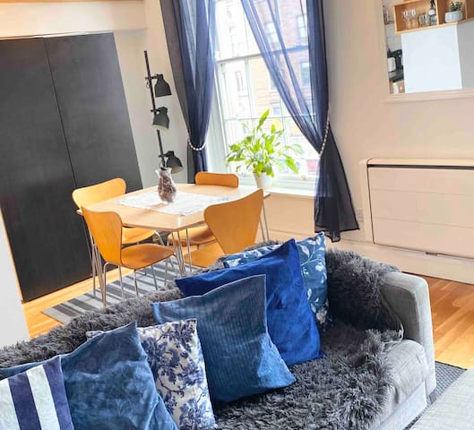 Beautiful Apartment 1 minute walk from Temple bar