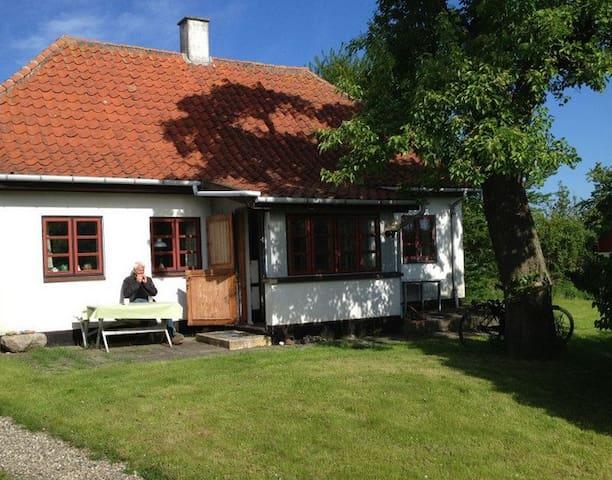 Summerhouse in DK Island, Drejø - Svendborg - Hus