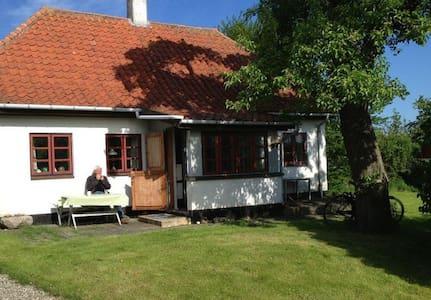 Summerhouse in DK Island, Drejø