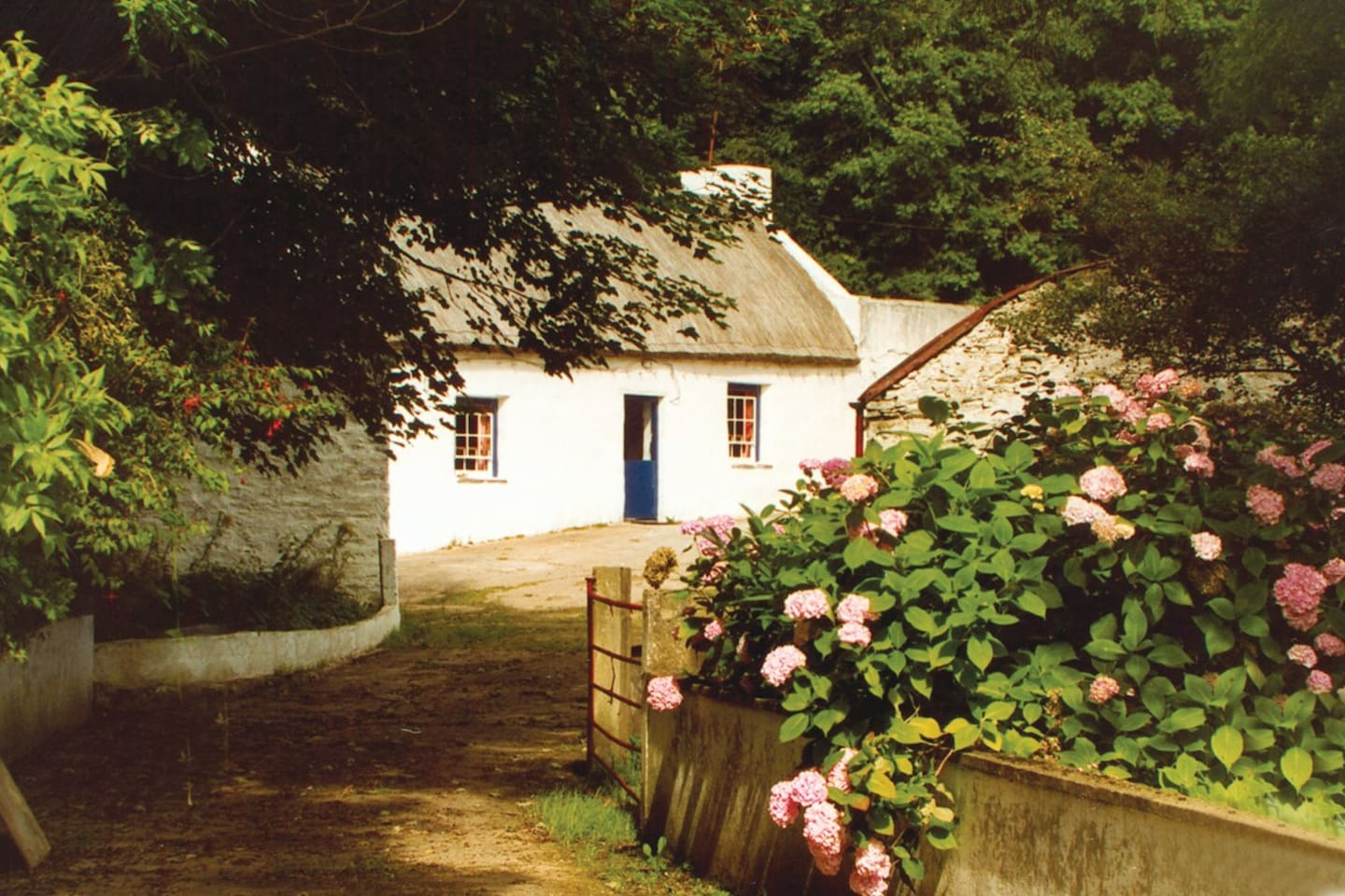Graham's Irish Thatched Cottage