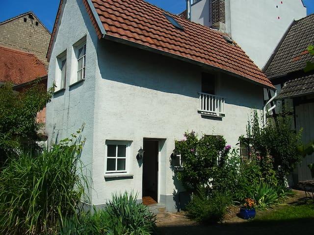 Charming rural farmhouse, (Bauernhaus) - Schöneck - Haus