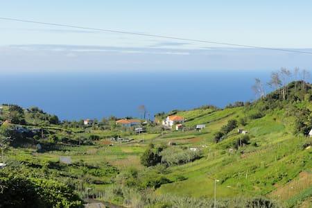 Madeira Island Holidays - Santana - Дом
