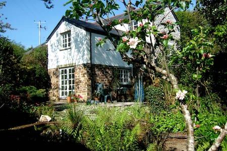 Lostwithiel. Cottage Annex. - Lostwithiel