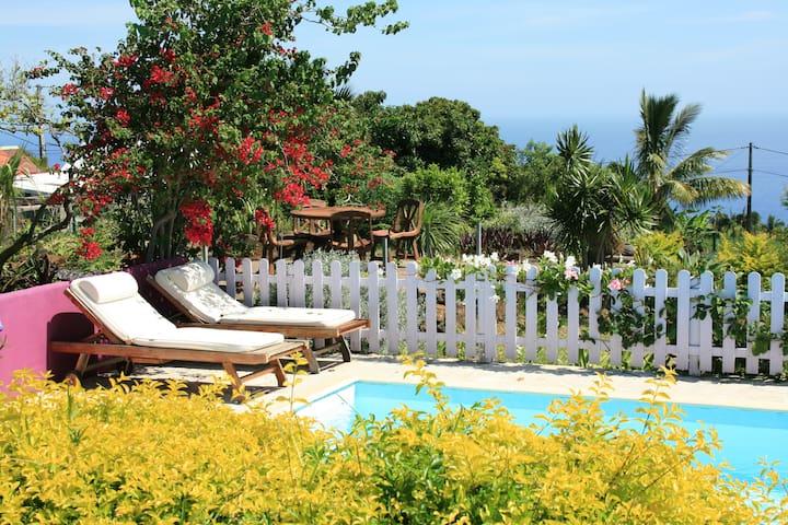 Appartements maisons et villas avec piscine grand bois for Le jardin reunionnais 97410