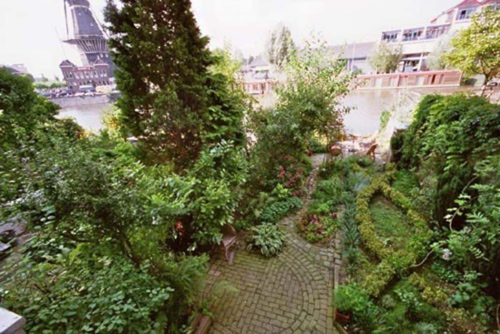 garden suite studio