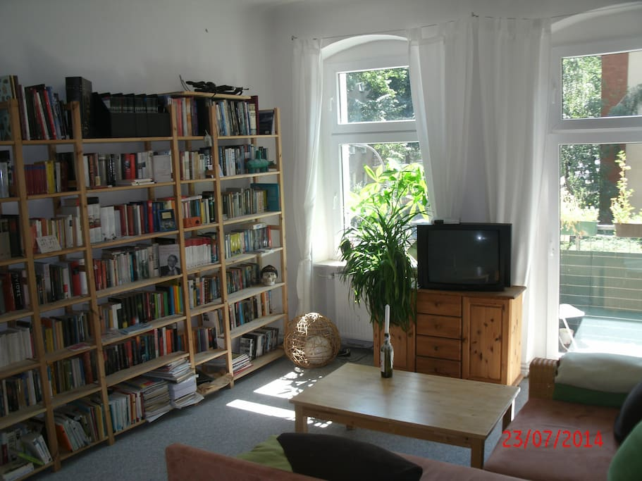 TV with my little library