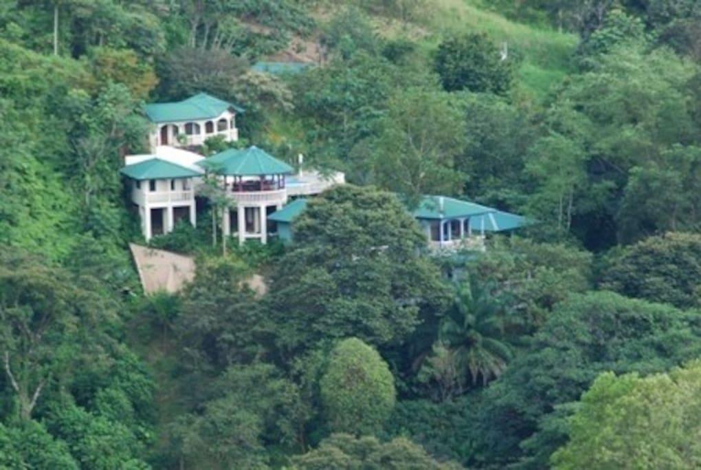 Jungle mt river ocean tranquilty villas for rent in for Villa rentals in costa rica