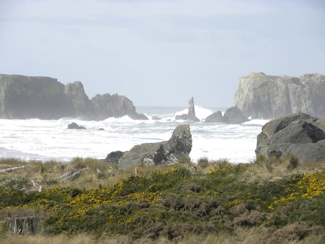 Dunes House at Bandon - VIEWS!!