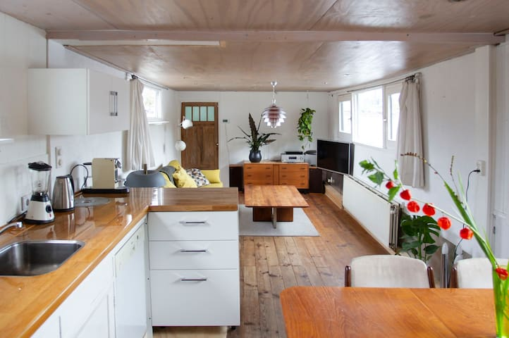 Central Viewpoint Houseboat