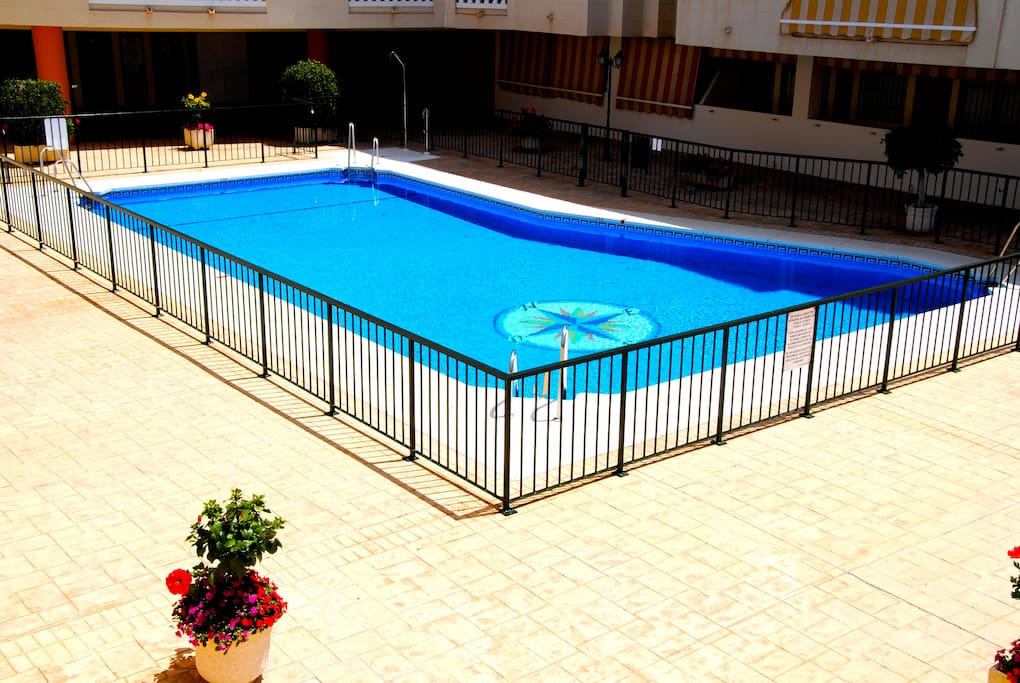 Piscina / Swimming pool / Piscine / Pool
