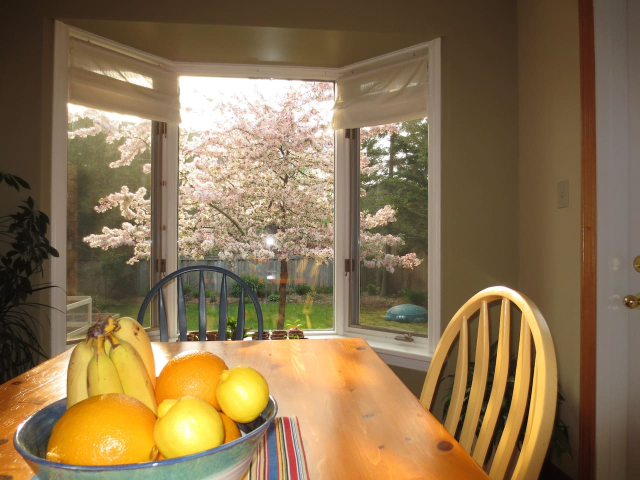 Bright sunny kitchen with a large harvest table.