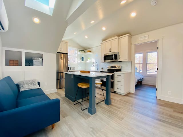 Brand New Guest House in Historic Hyde Park