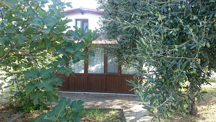 Bozcaada Cottage  - Bozcaada - Mökki