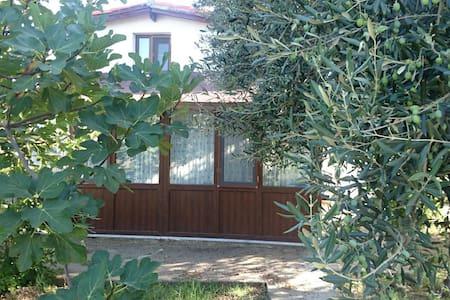 Bozcaada Cottage  - Bozcaada