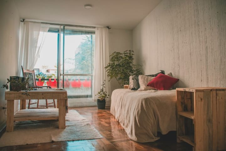 Cozy apartment Barrio Lastarria, downtown Santiago