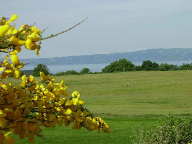Lake Bolsena from the grounds