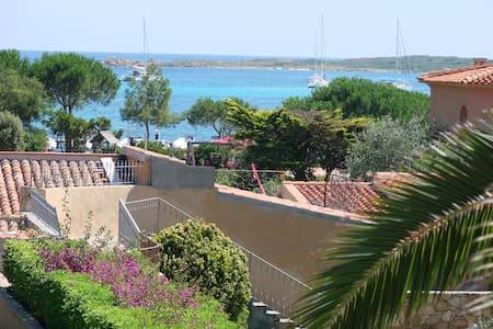 Beautiful Sea & Garden View