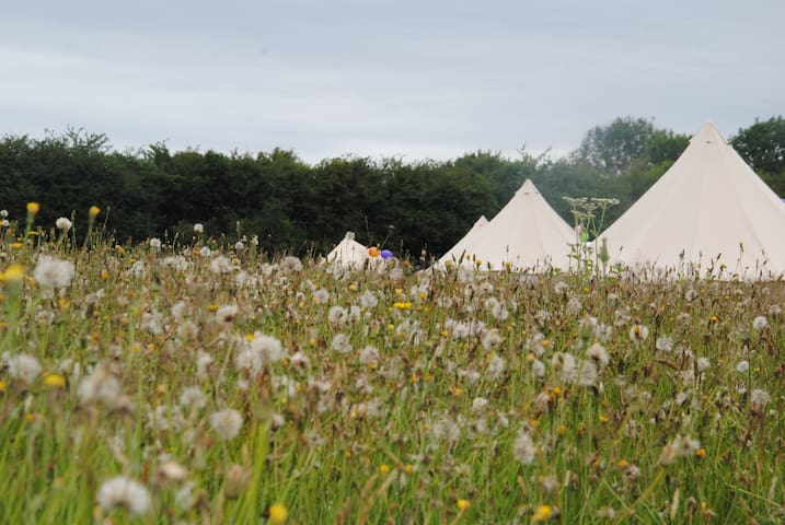 Luxury Bell Tent Village and Farm, East Sussex