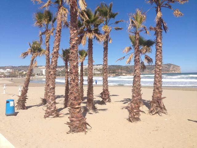Playa del Arenal (a 50m)