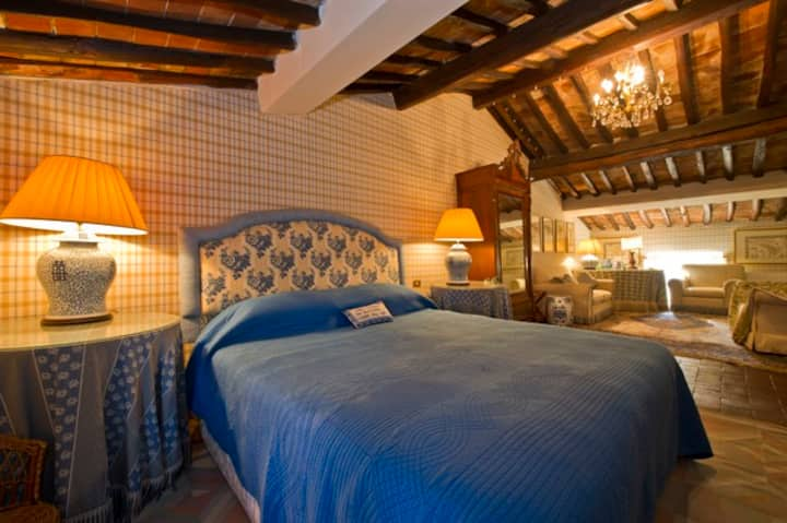 Azzurra Room - In a Historical Villa in Tuscany