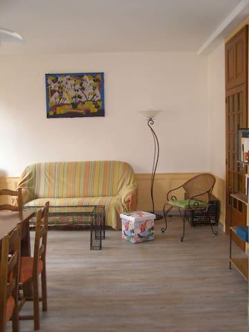 Chez tante Irène (maison 9 places) - Villecomtal - Villecomtal - タウンハウス