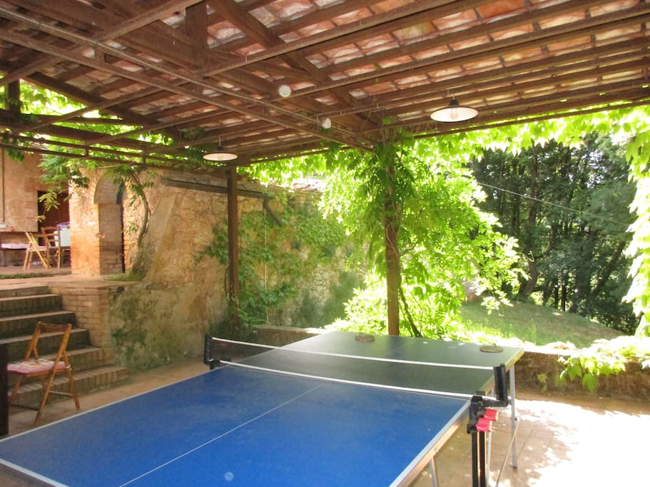 Ping-Pong and many other games for young and old