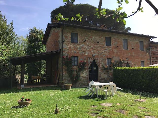 Terrarossa Lucca 1