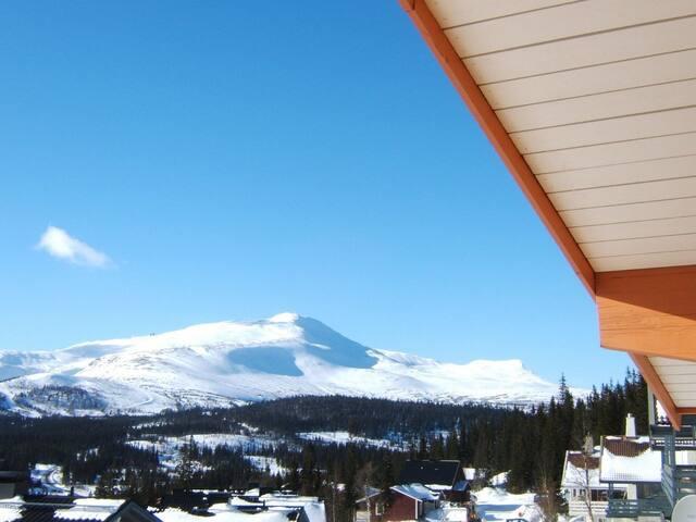 Utsikt mot Skutan.