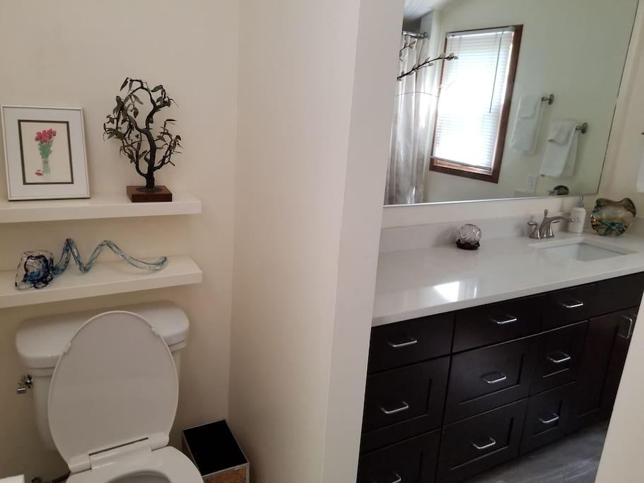 Toilet and Bathroom.