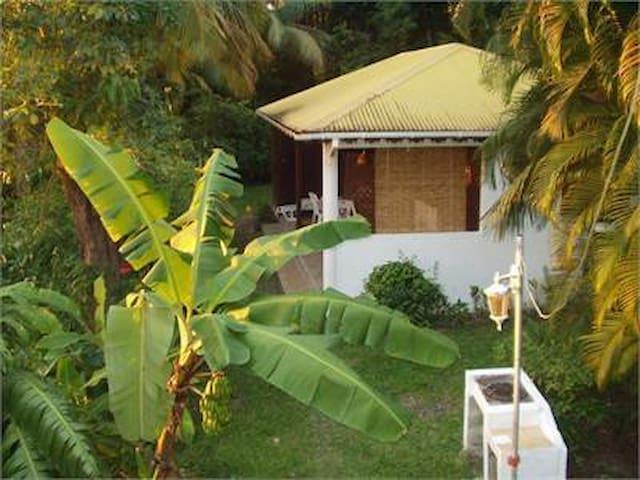 studio ti-caraïbe - Basse-Terre - Wohnung