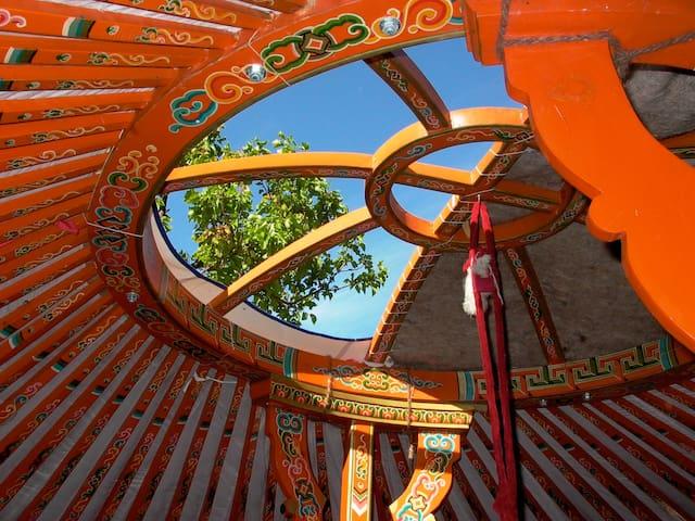 Mongolian Yurt on beautifull spot