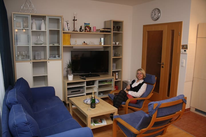Cosy flat near Prague Castle