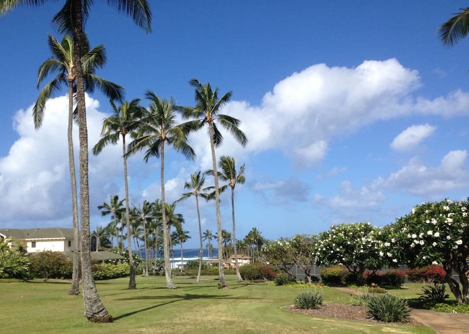 Our walking path leads directly to beach