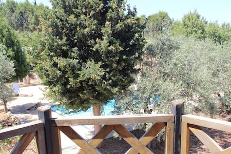 Villa with Swiming pool - Kfar Yachit