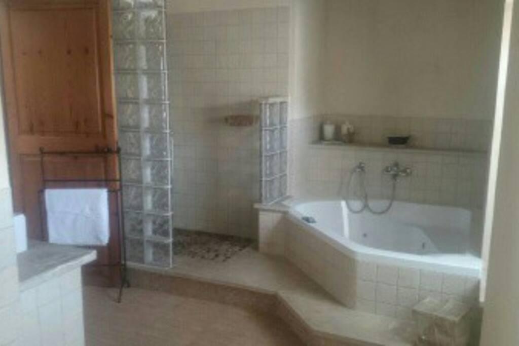 Baño principal con ducha y bañera con hidromasaje