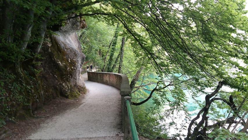 The path around Lake Bled