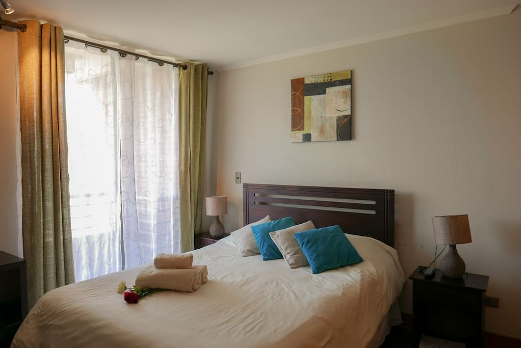 Dormitorio con cama de dos plaza mas TV