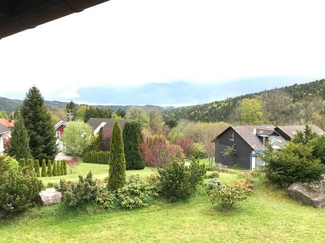 Gemütliche Wohnung mit Pool Schwarzwald Häusern